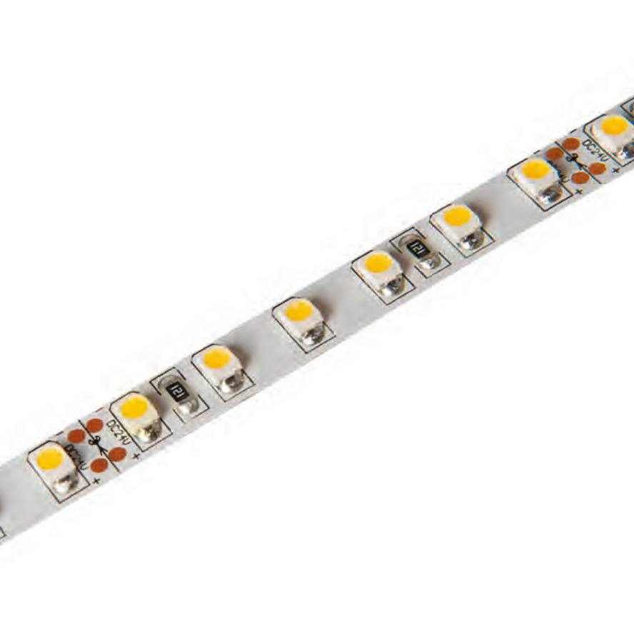 Tiras flexibles monocolor 224 LEDs/m 2835 IP33