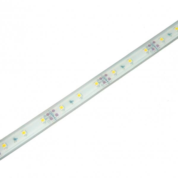 Single-color flexible strips 60 LEDS/m 3528 IP68
